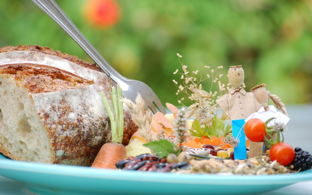 Comité de pilotage restauration collective et alimentation biologique